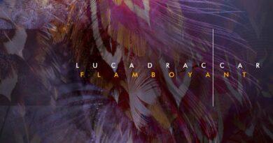 Flamboyant by Luca Draccar